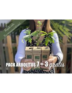7+3 Gratis PACK ARBOLITO DE...