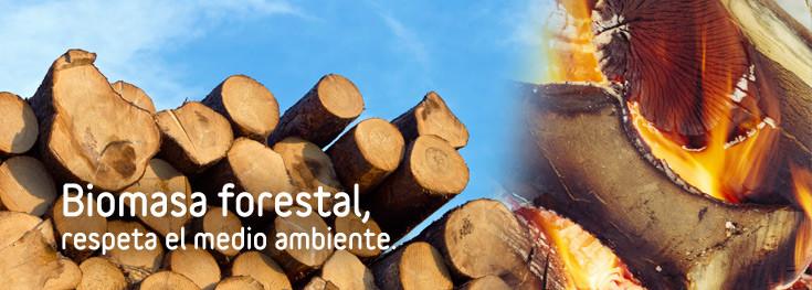 Venta online de biomasa forestal