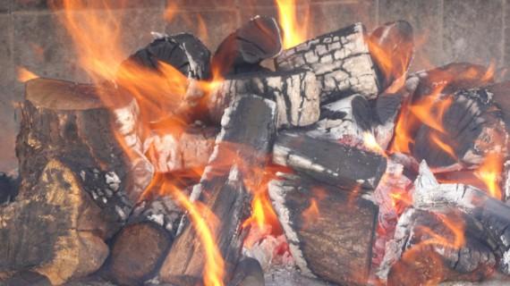 SINERGIAS LEÑAS LEGUA, FIRE&FOOD Y HORNOS JOSPER